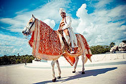 Have the groom arrive in style on a decorated white baraat horse.