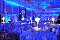A very popular service amongst our clients, you can use the LED Uplights to transform a bland ballroom to a breathtaking ballroom.  Choose from a million colors to match any theme that is planned for your special event.